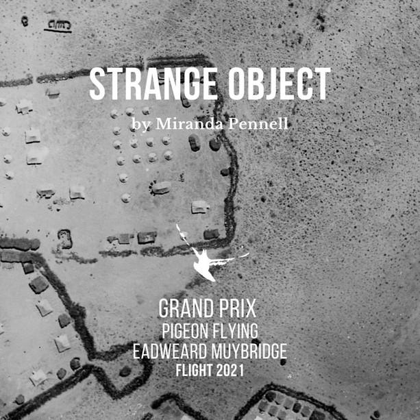 """Flight: il Grand Prix a """"Strange Object"""" di Miranda Pennell"""